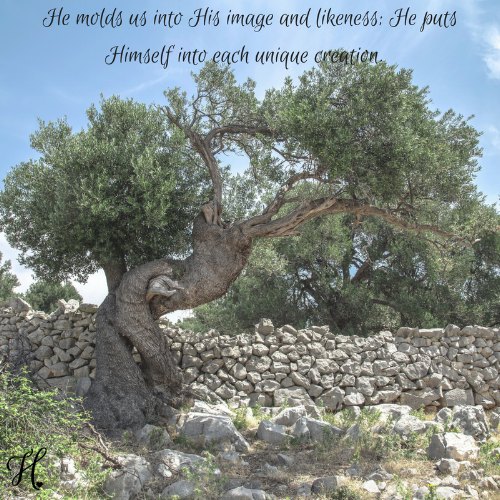 W1D2-Adam and Eve-Jesse Tree Study.png