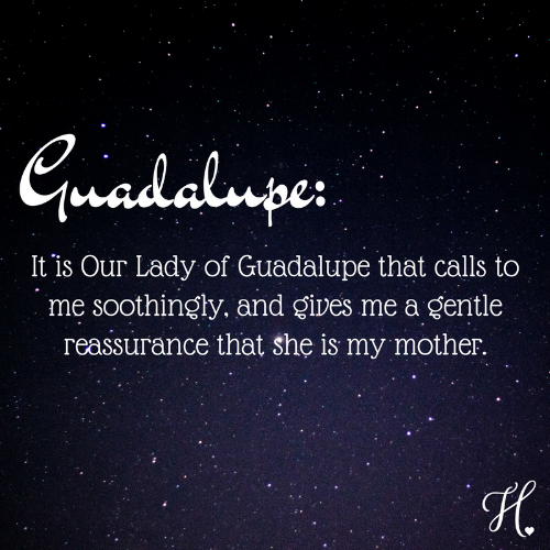 guadalupe-2.png