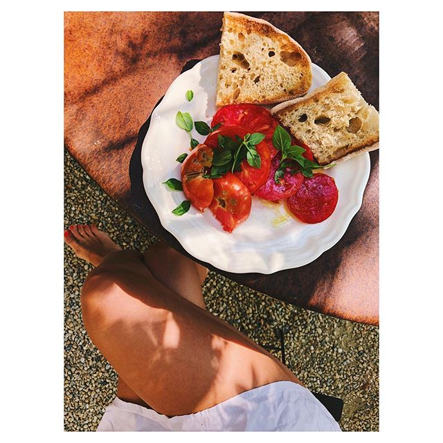 Summer at it's best 🍅 Enjoying some garden tomates with freshly picked basil, olive oil and toast for breakfast 🌿