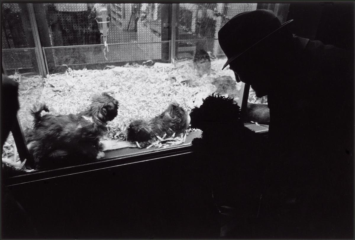 New York City  1975