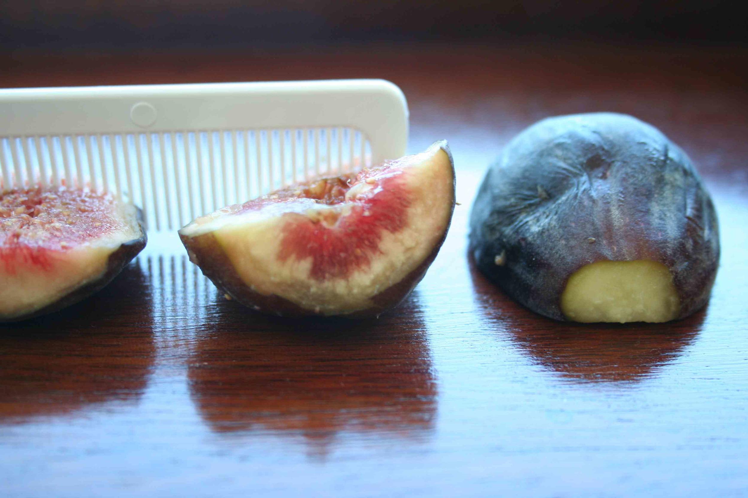 comb in figs.jpg