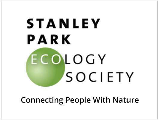 Stanley Park Ecology-530x400.jpg