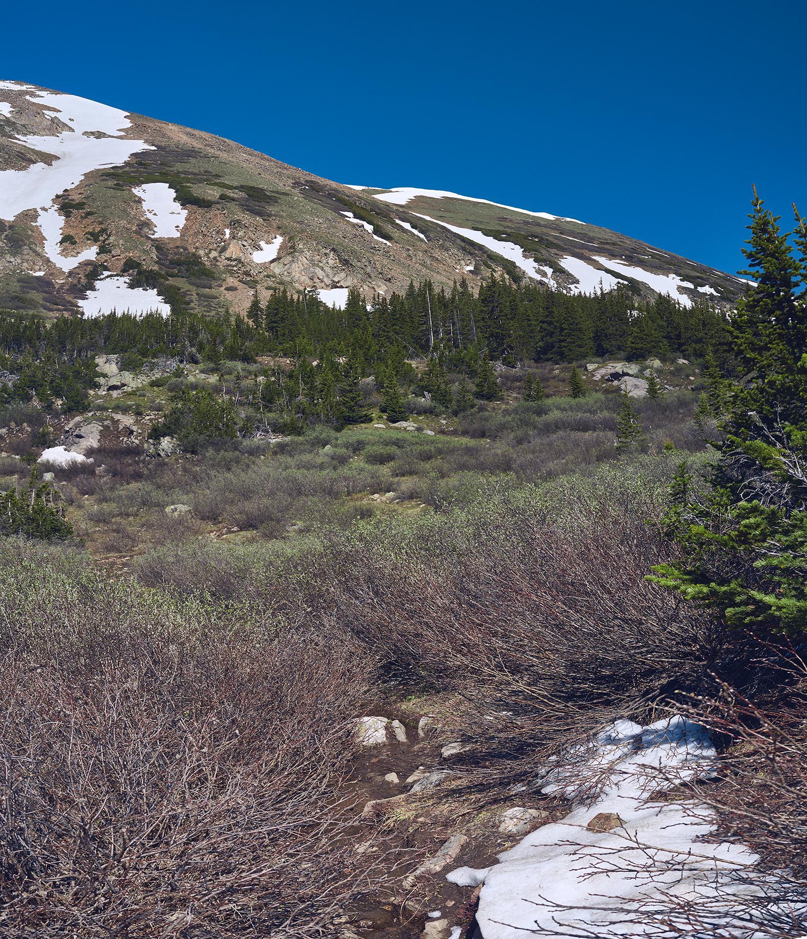 20150619_Shelf_Lake_Trail.jpg