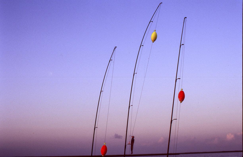 Fishing006.jpg