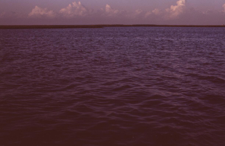 Fishing010.jpg