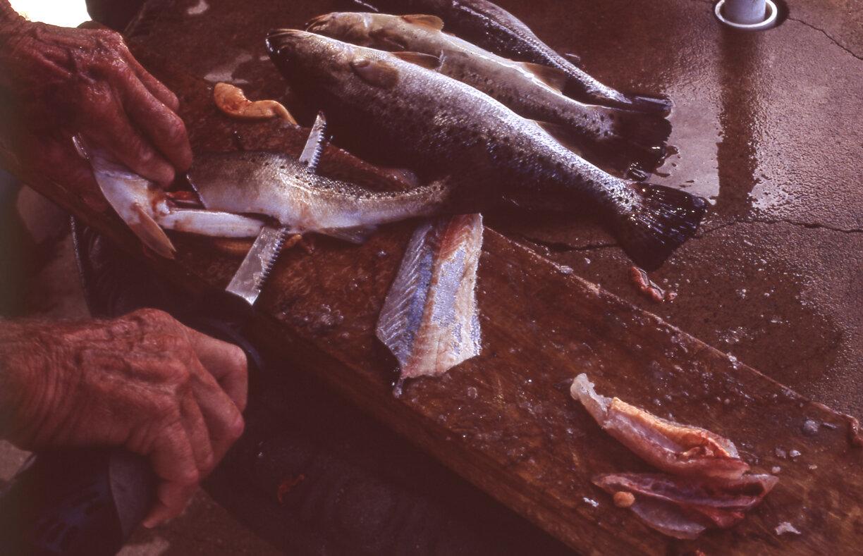 Fishing030.jpg