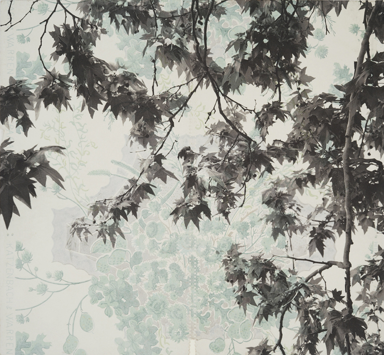 "Branches and Boughs VI,  2009   Archival digital pigment print on kozo shi, vintage wallpaper   20"" X 21.5"""