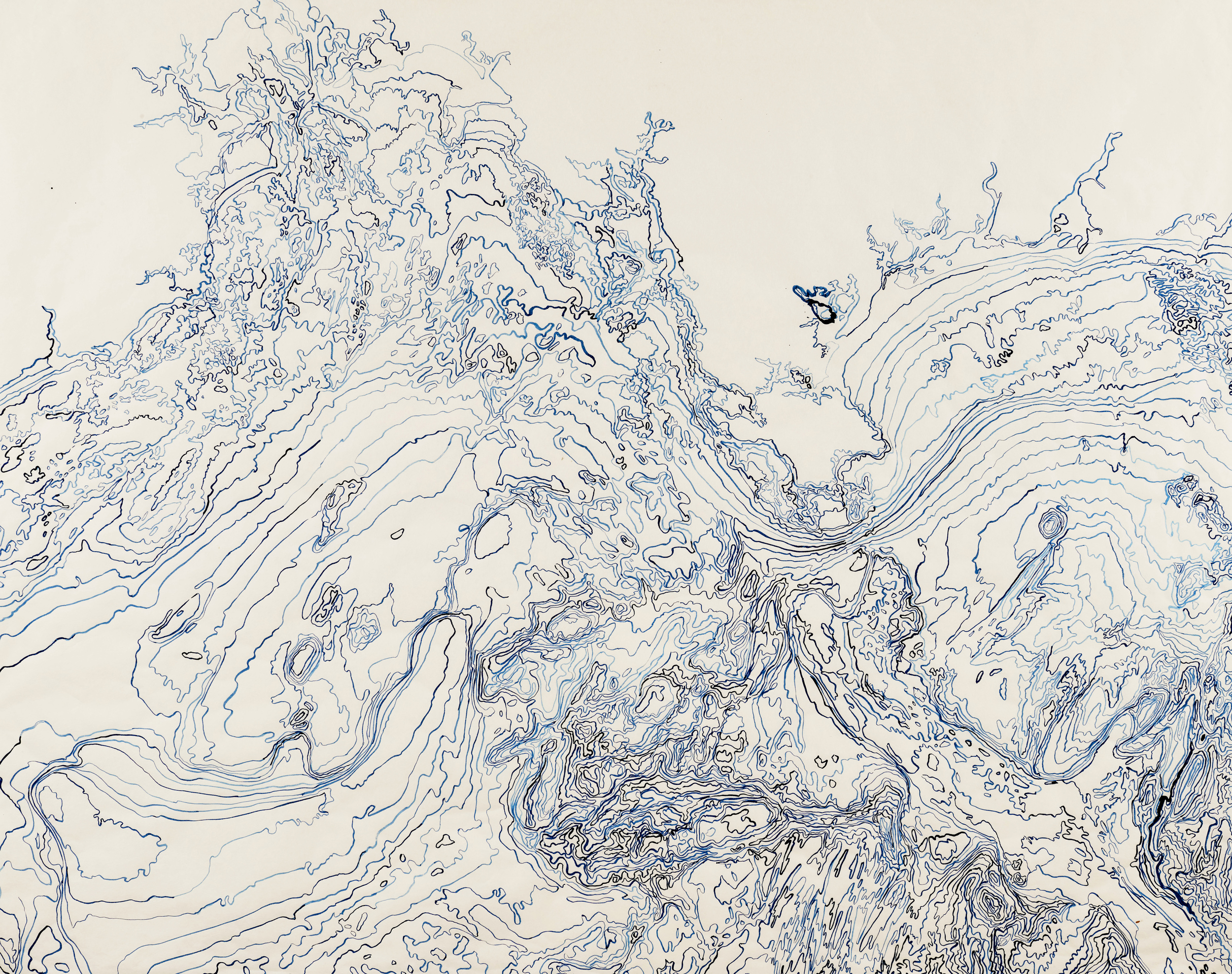 "Bathometric I, 2013   Brush and ink on kozo shi   46.5"" X 57.5"""