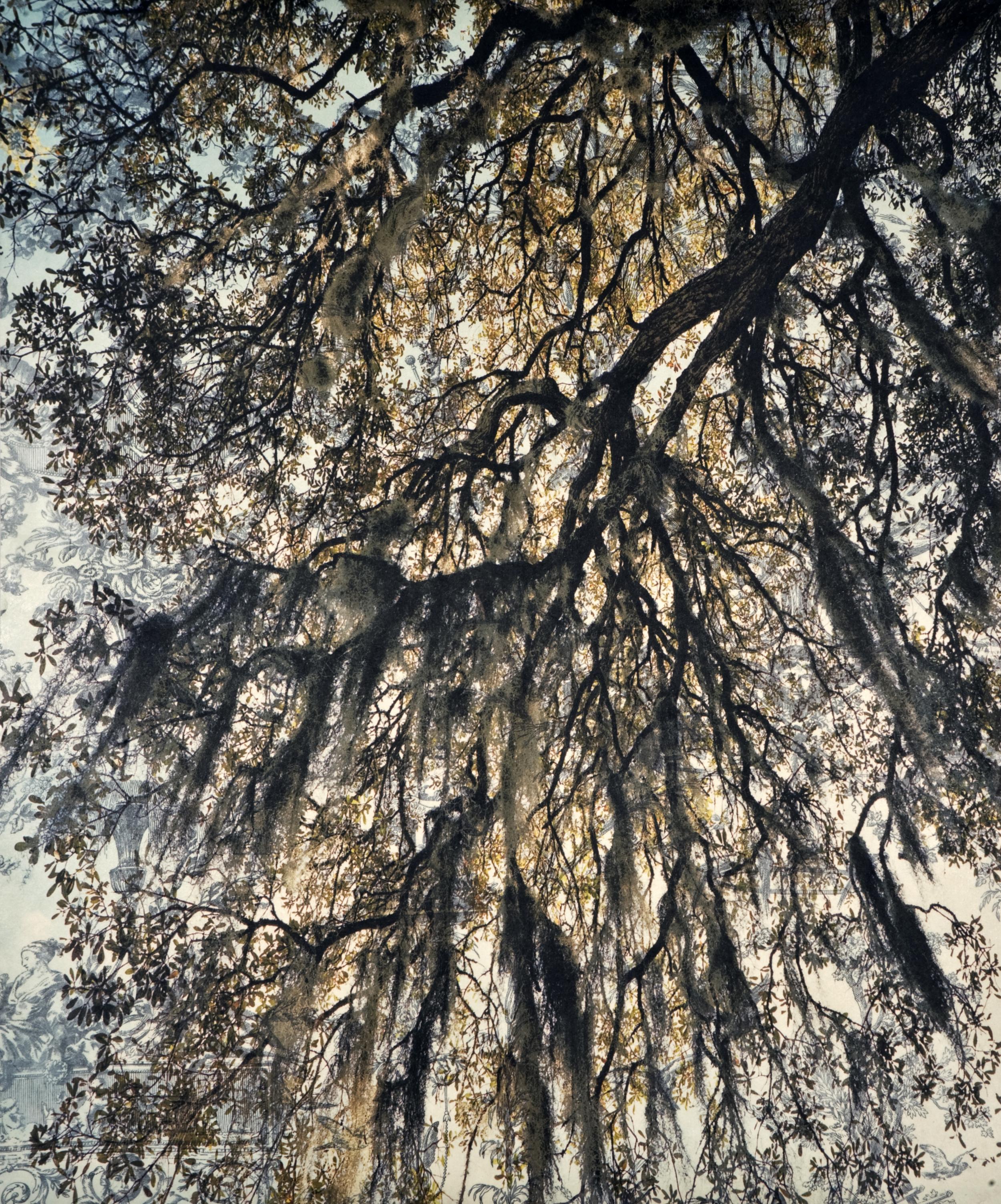 "Spanish Moss Toile IV, 2010   Archival digital pigment print on kozo shi, wallpaper, wax   24"" X 20"""