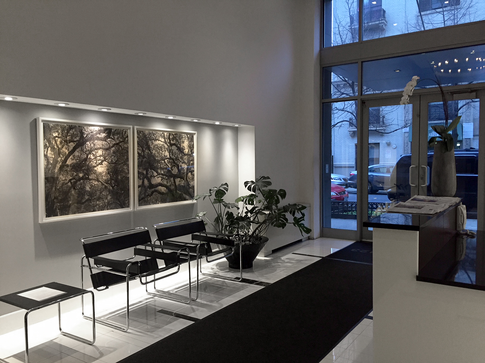 Live Oak Toile Diptych,  2010   Installation shot - Lobby of 117 West 123rd Street, New York, NY