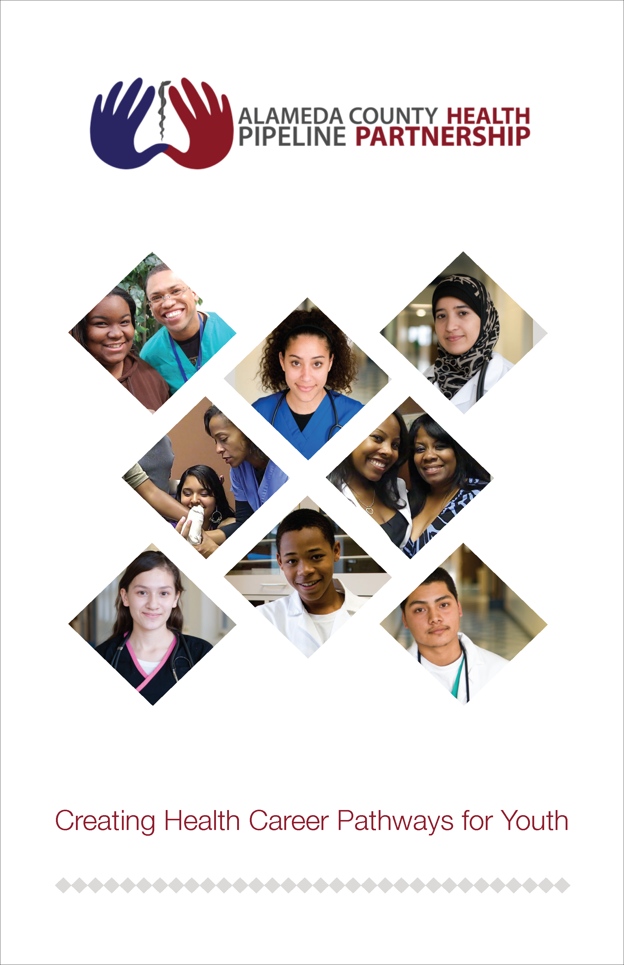 ACHPP 2016 Brochure v3b_cover.png
