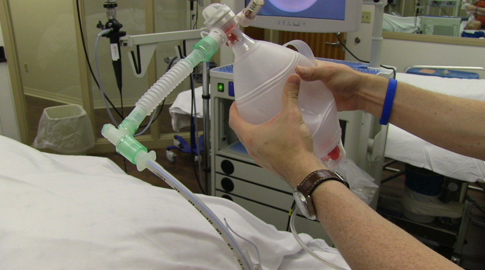 Fiberoptic Intubation through an LMA