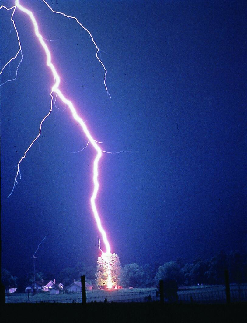 """""""Lightning hits tree"""" by Unknown, author of the article is Barbara Watson - http://www.erh.noaa.gov/er/lwx/lightning/va-lightning.htm. Licensed under Public domain via Wikimedia Commons - http://commons.wikimedia.org/wiki/File:Lightning_hits_tree.jpg#mediaviewer/File:Lightning_hits_tree.jpg"""