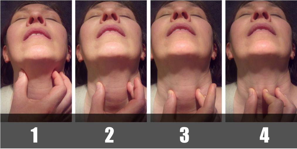 Adapted from Levitan, R.Laryngeal Handshake - Hyoid - Thyroid - Cricoid > Cricothyroid membrane http://www.airwaycam.com/airway-images-drawings/?gmedia_gallery_id=2&gmedia_gallery_share=74