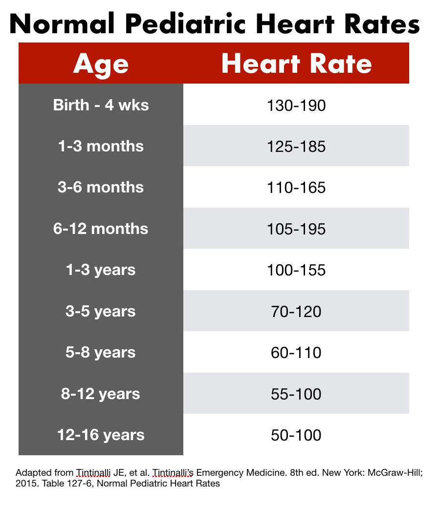 pediatric HR-1.png