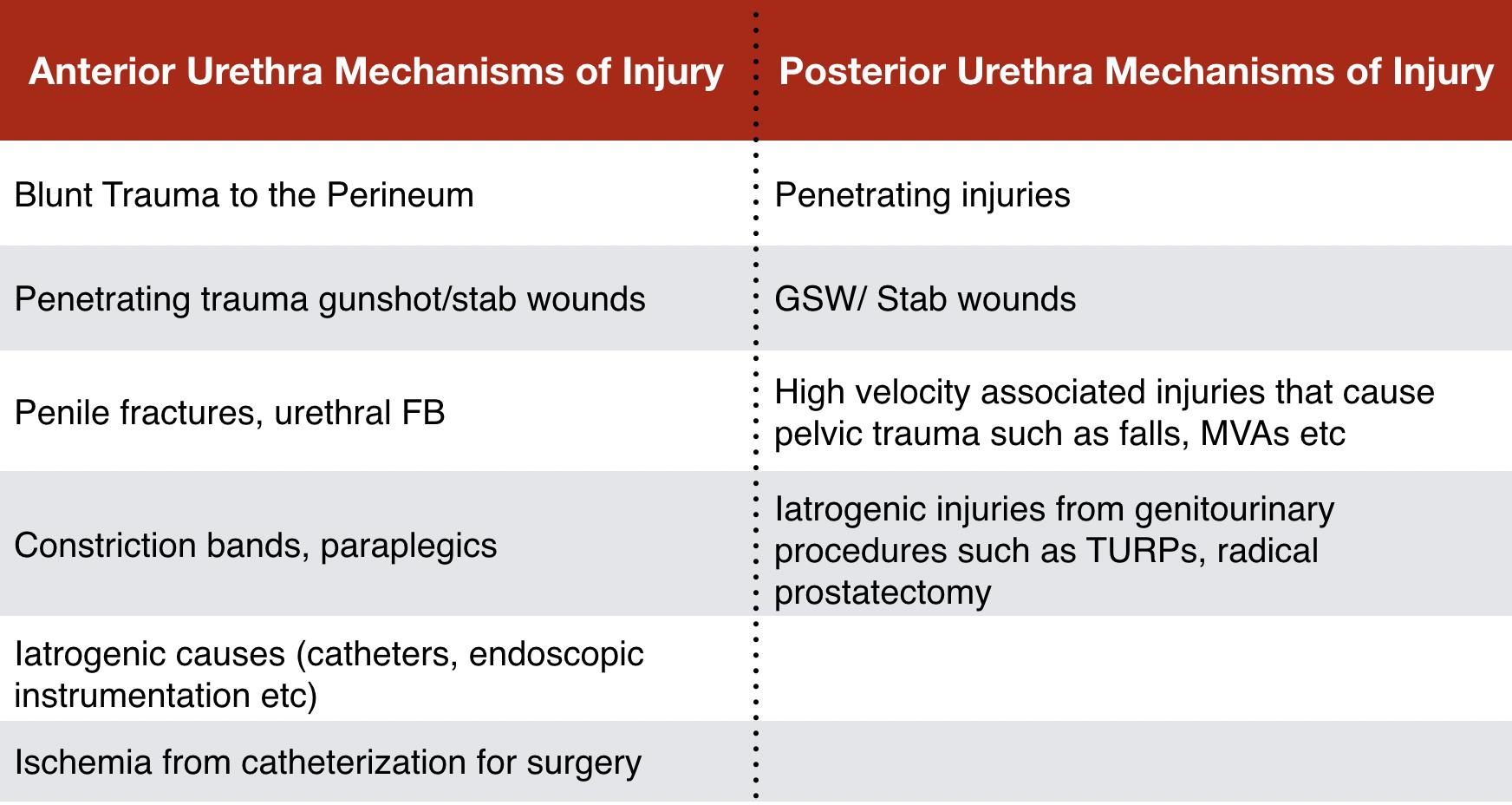 Table 1 - Common Mechanisms of Injury in Urethral Trauma. Chapple C, Barbagli G, Jordan G. Consensus statement on urethral trauma. BJU Int. 2004; 93(9):1195–20