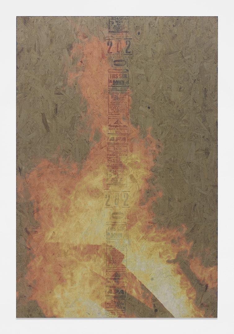 Bonfire 6<br>4' x 6'<br>2014