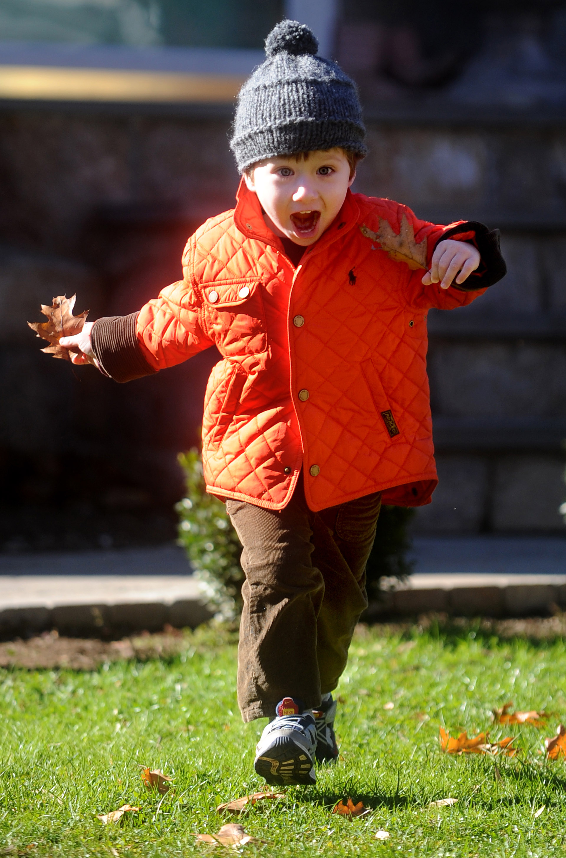 James Geaney, 3, collects leaves while on a walk with his mother, Jennifer, not pictured, on Szost Drive in Fairfield on Friday, November 12, 2010.