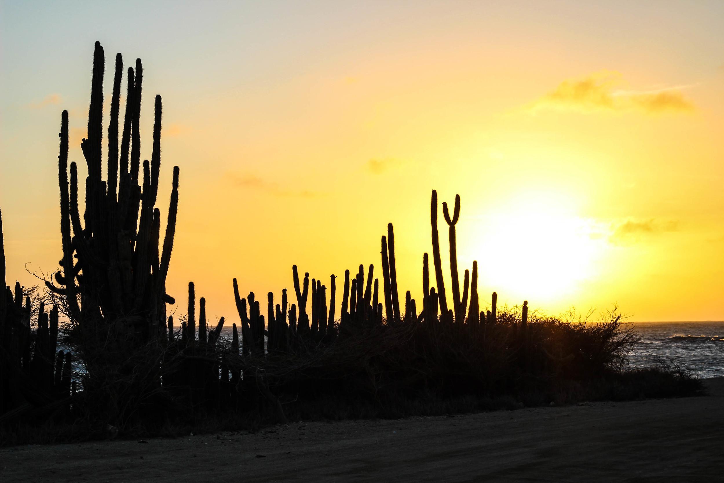 the northwestern most tip of Aruba