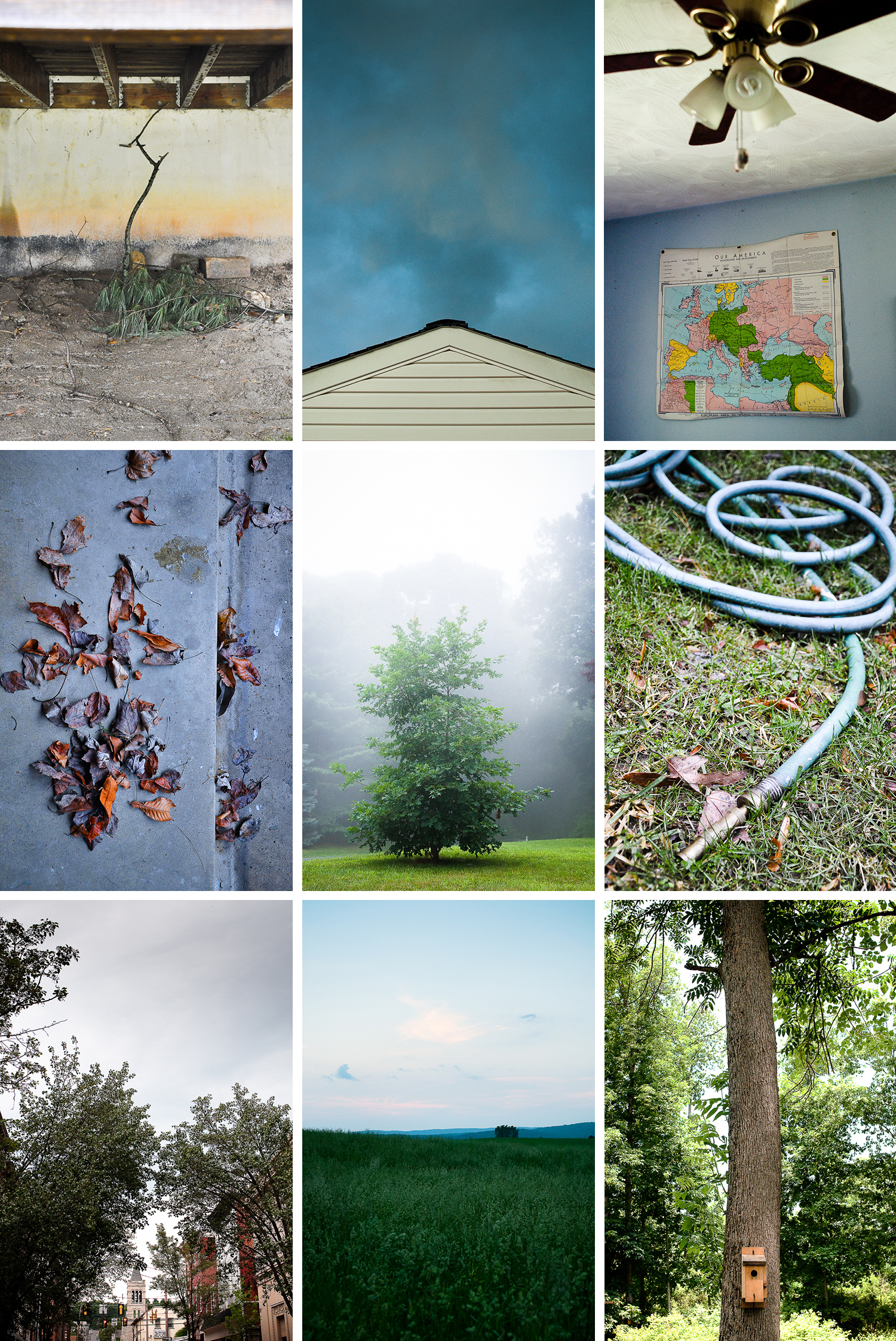 """Daily Life, Pennsylvania"" -   (Row 1)   Under the Deck  , Franklin Township;   Roof  , Franklin Township;   Our America,   Huntingdon, PA; (Row 2)   Scattered,   Franklin Township;   Joe's Oak in Fog  , Franklin Township;   Hose at the Side of the House  , Franklin Township; (Row 3)   Steeple  , Huntingdon;   Field  , Williamsburg;   Birdhouse  , Huntingdon"