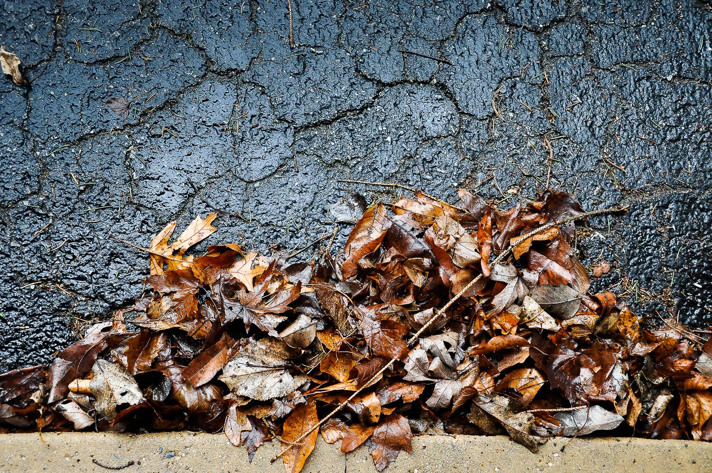 Garage Door Leaves  , Franklin Township, PA