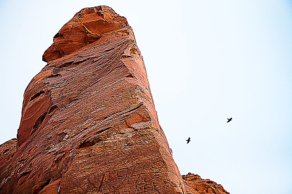 Two Birds at Red Rocks  , Gallup, NM