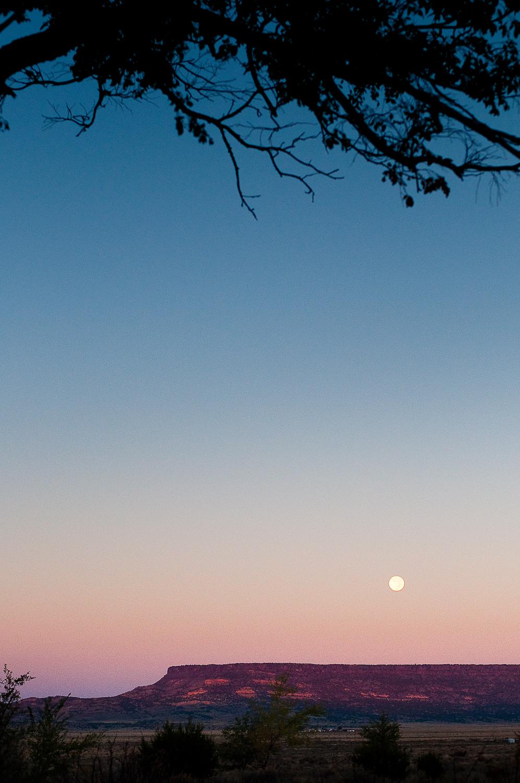 Moonset, Backyard  , San Fidel, NM