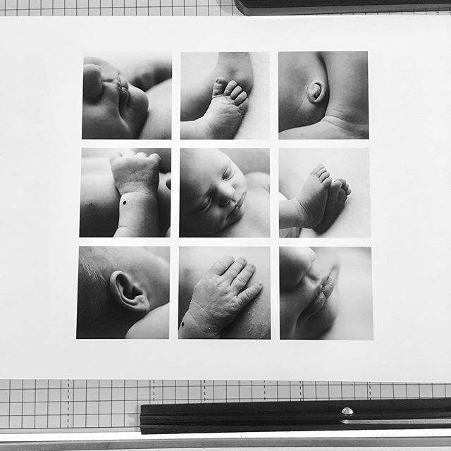 Just printed this macro grid for baby Emma, and I wish you could see this print in real life - it's absolutely stunning! #printyourphotos #saveyourmemories #newbornmacro #newbornsession