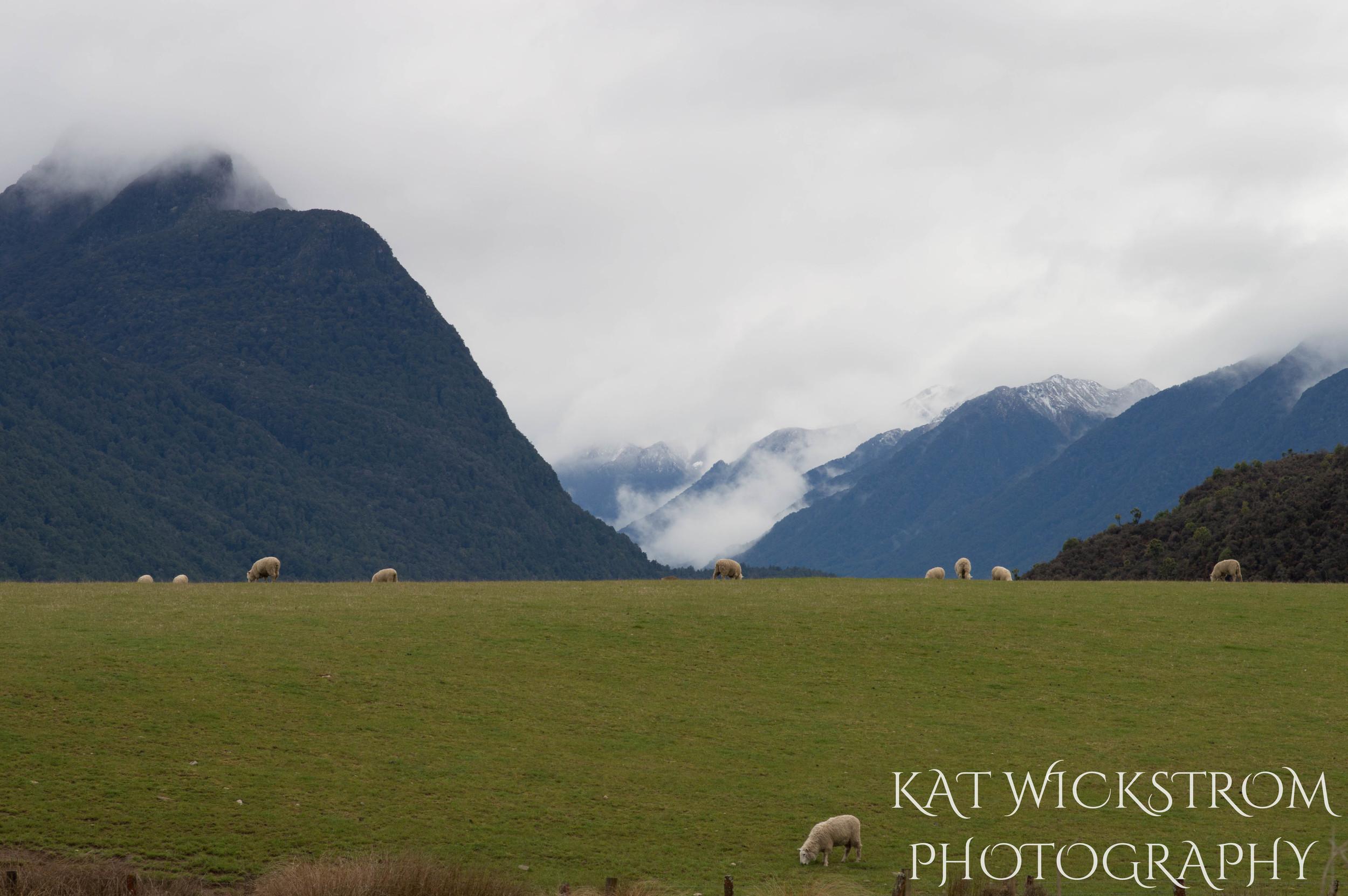South Island New Zealand Landscape Photography