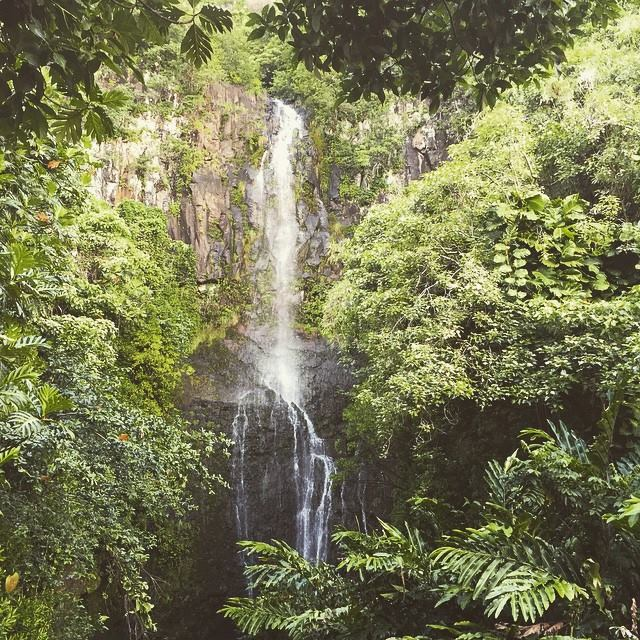The Road to Hana had some amazing waterfalls and jungle-like foliage. It felt like a whole different world from the other side of the island.