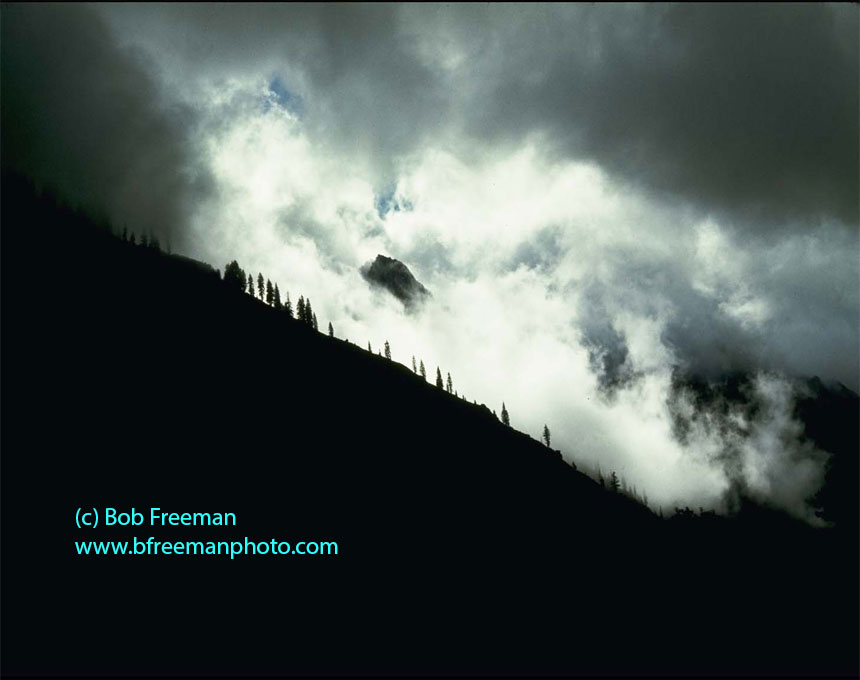 All photos on this web site are © Bob Freeman, 2014, All Rights Reserved  More photos at   www.breemanphoto.com