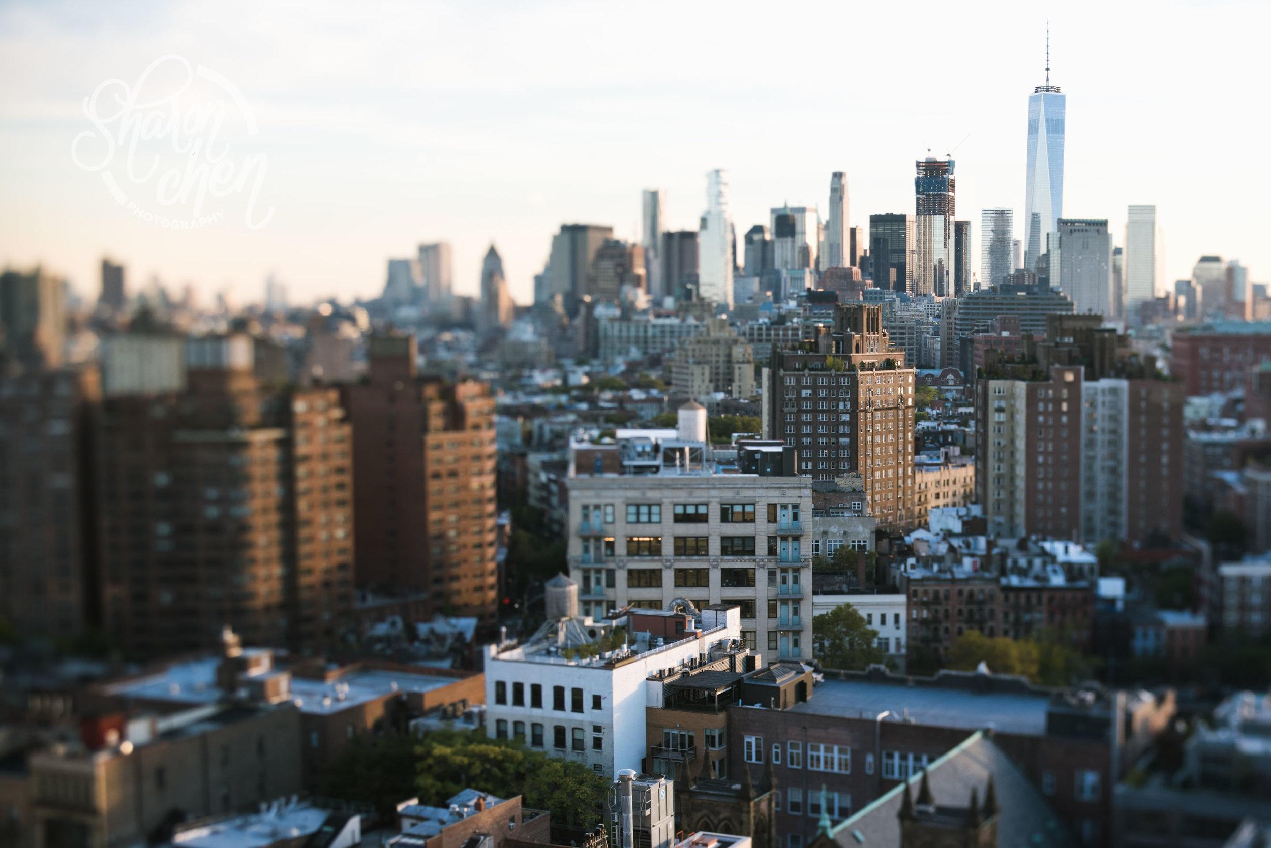 The downtown skyline.