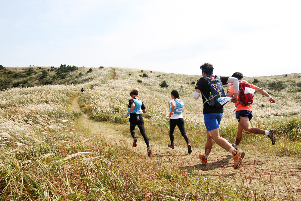 Ultra Trail Jeju caters for all types of runners in a three-day stage race