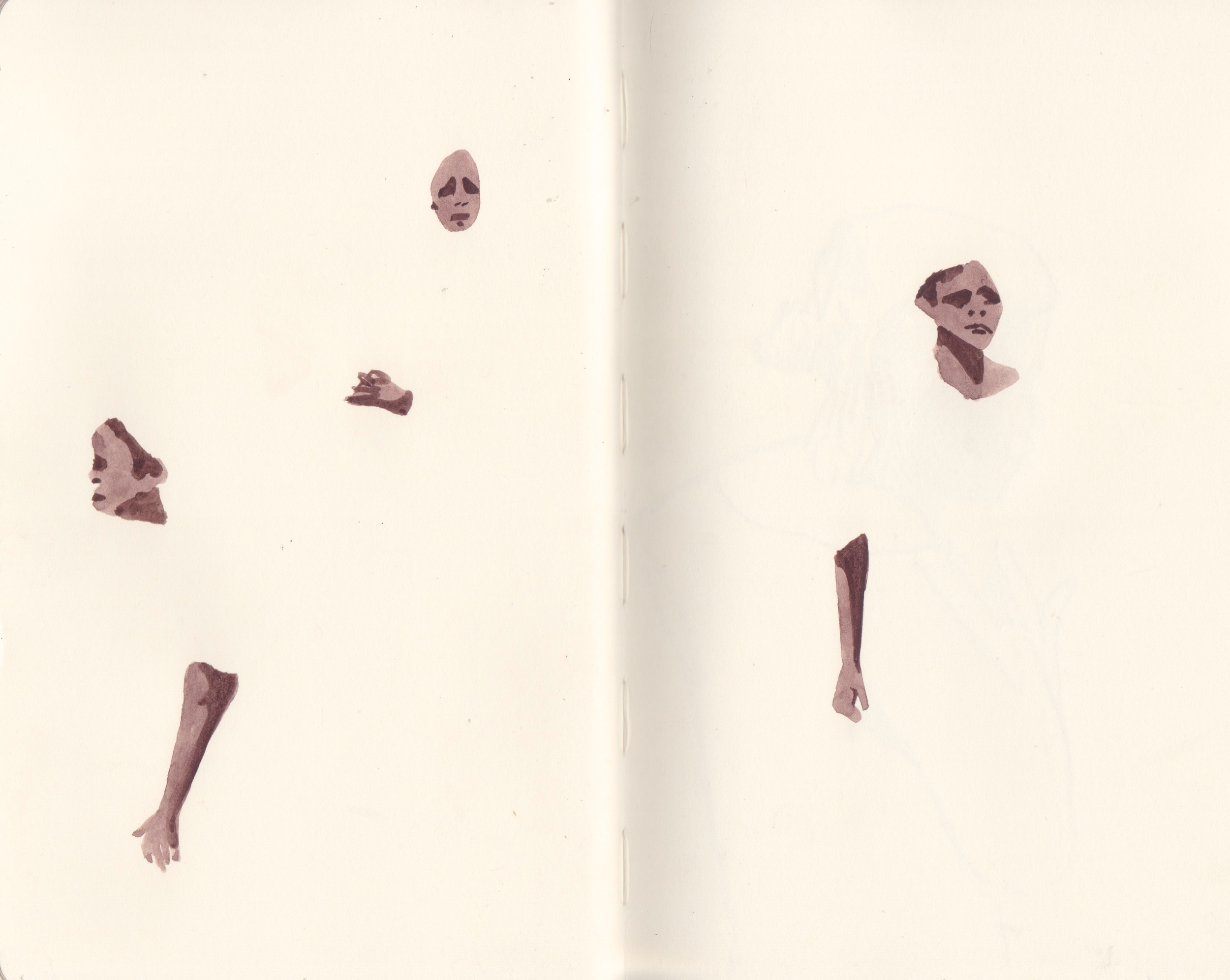 Gambia 19.jpeg