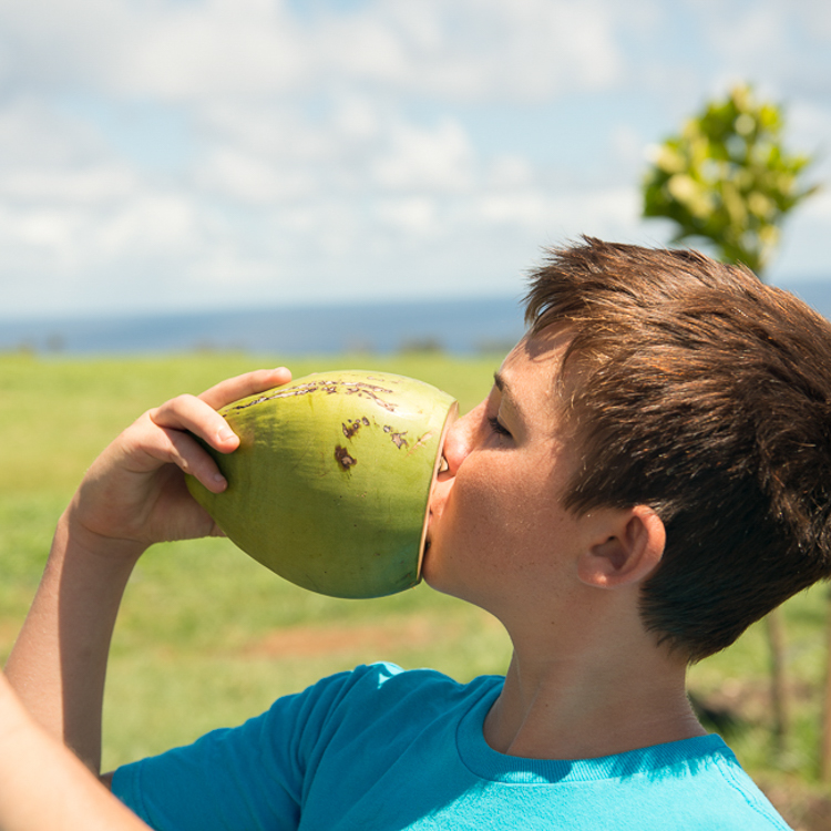 Tasting Fresh Coconut Water
