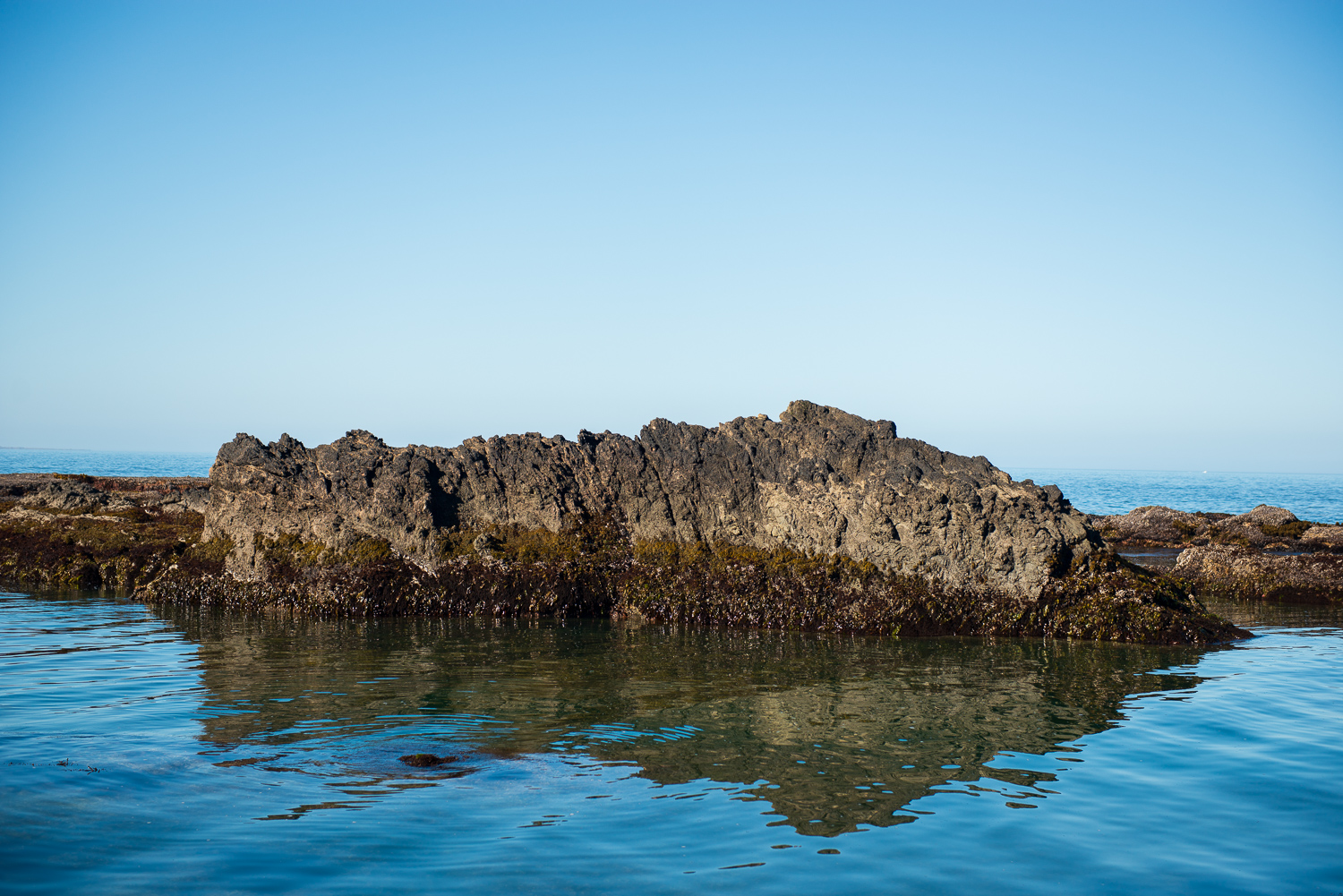 Rocks and Mussels, Bruhel Point