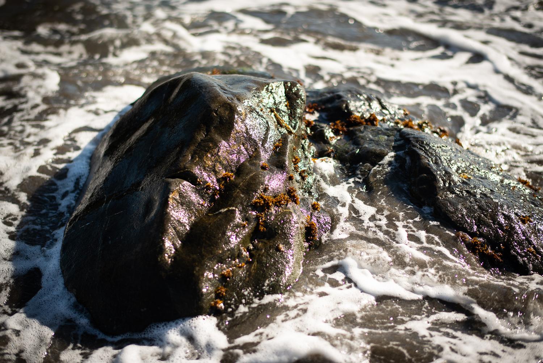 Rising Tide, Pointe Reyes National Seashore