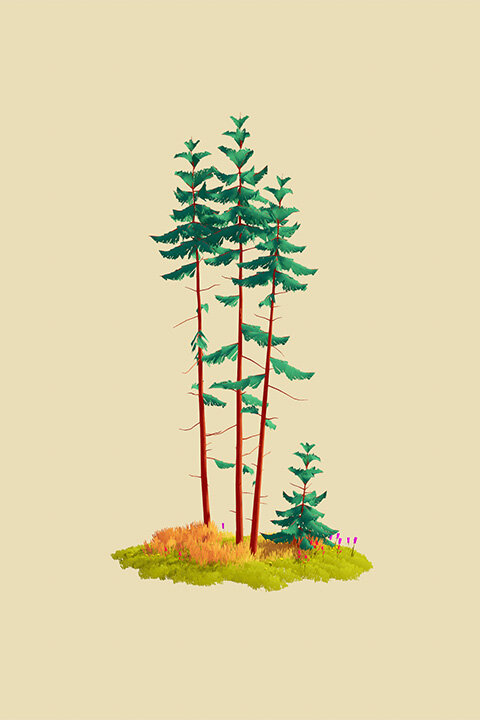 IllustratedNature_TallFirs.jpg