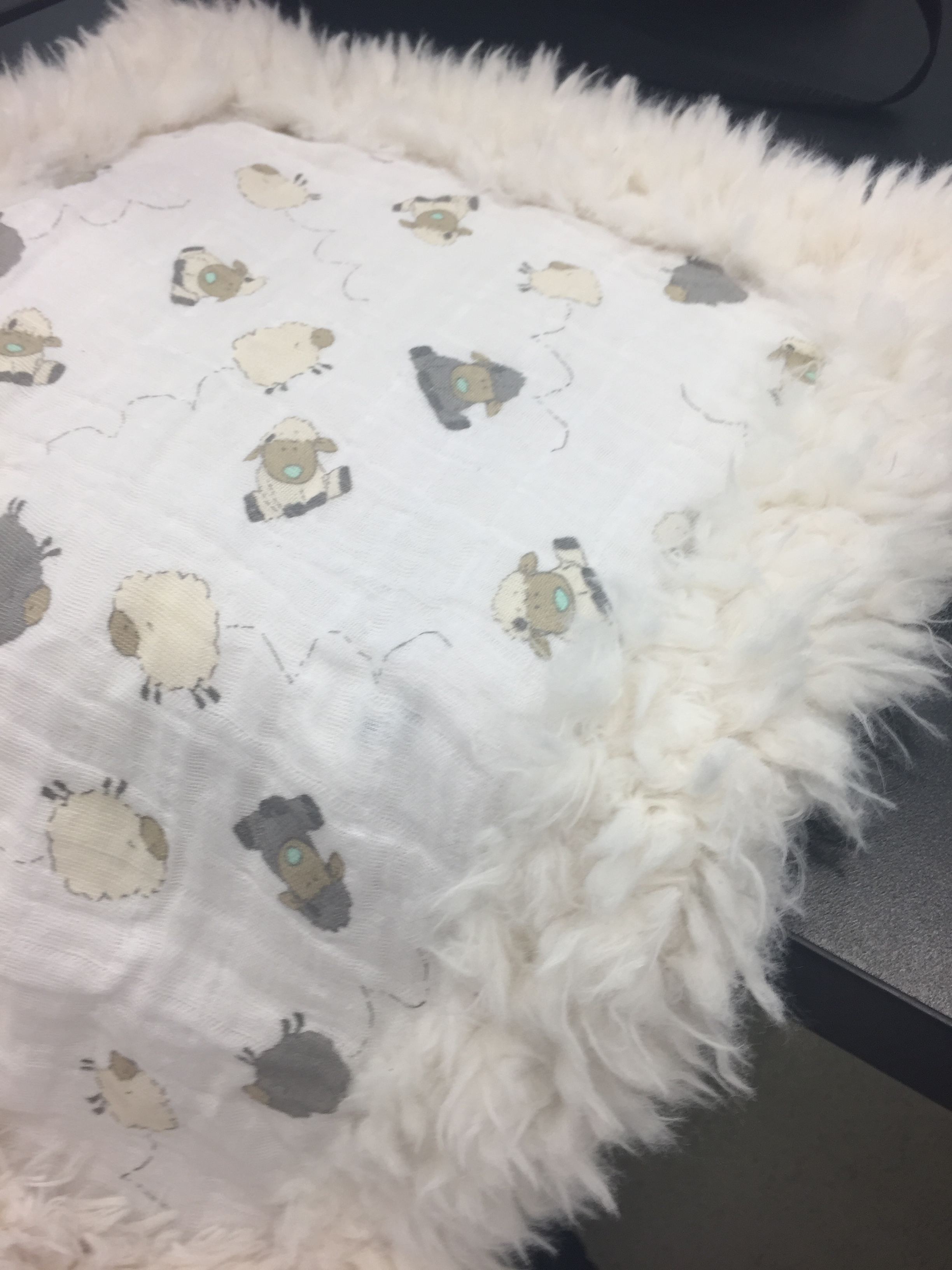 This is a sweet blanket made with  Embrace  on the top and a gorgeous Luxe Cuddle on the bottom