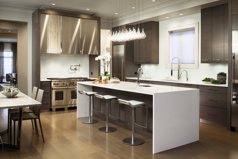Modern Kitchen with Polished Nickel Accents, EKD Chicago