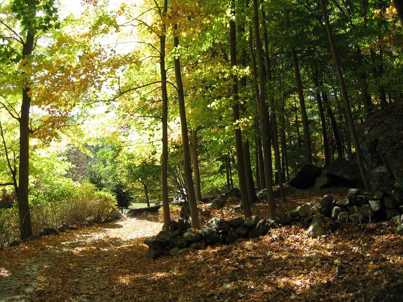 HikingTrails.jpg