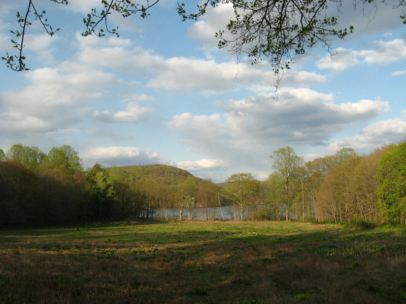 Long Pond in spring 2008.jpg