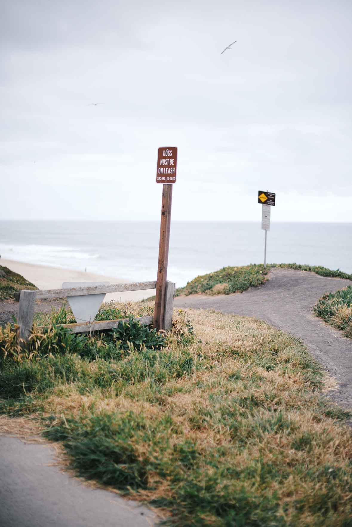 half moon bay, CA | A Brown Table