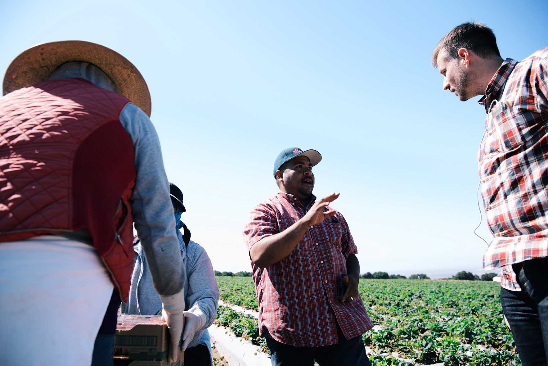 the story of a California strawberry worker | A Brown Table