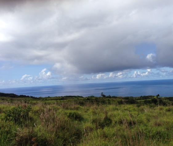 Hawaii Island view.jpg
