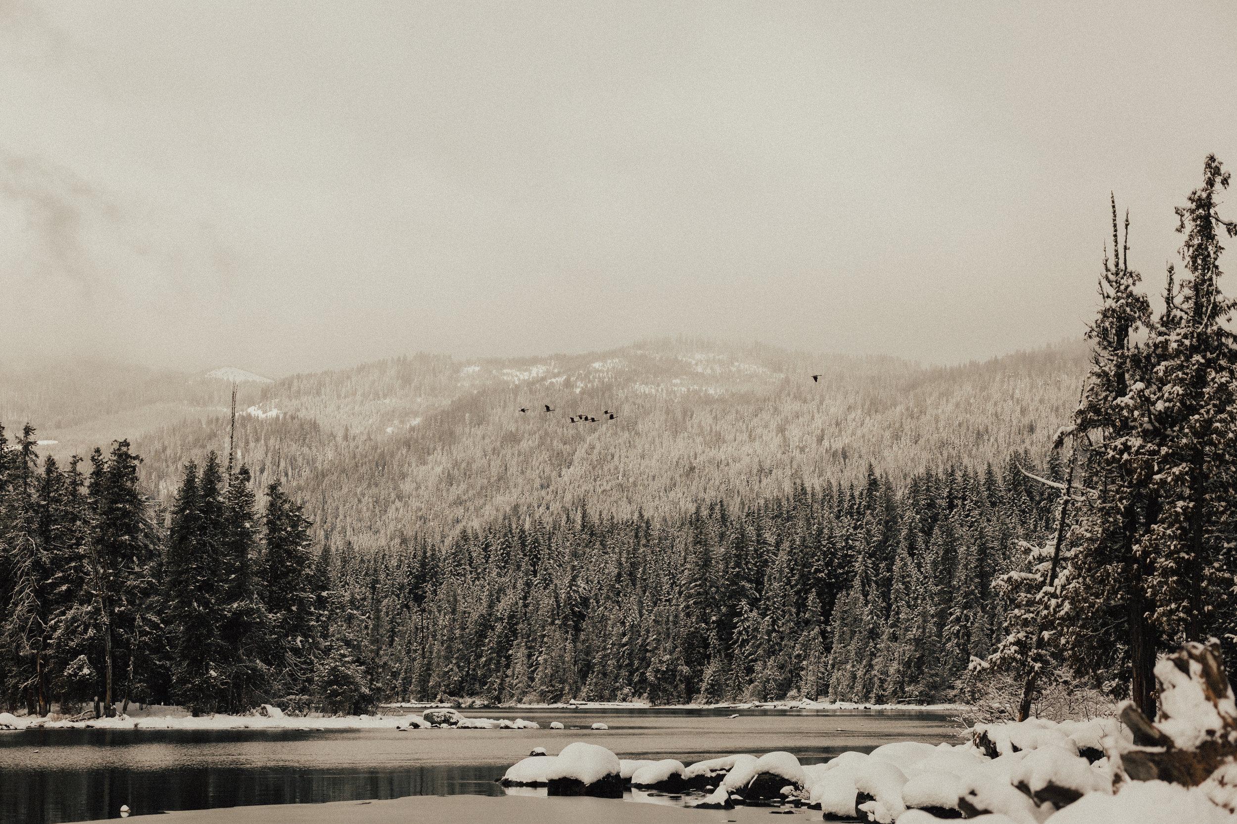 Lake-Wenatchee-Engagement34.jpg