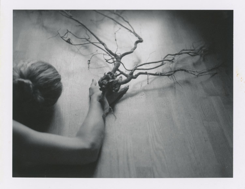 anne-silver_reaching, longing.jpg