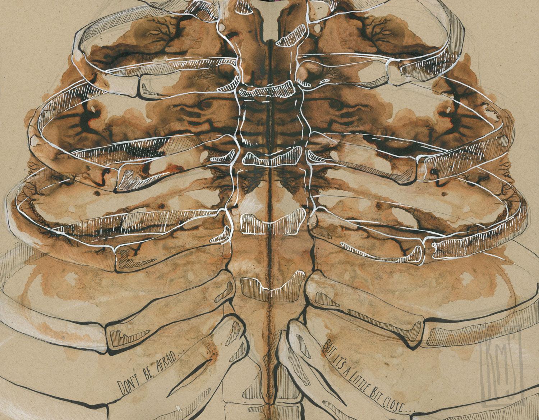 ribcage_Web.jpg