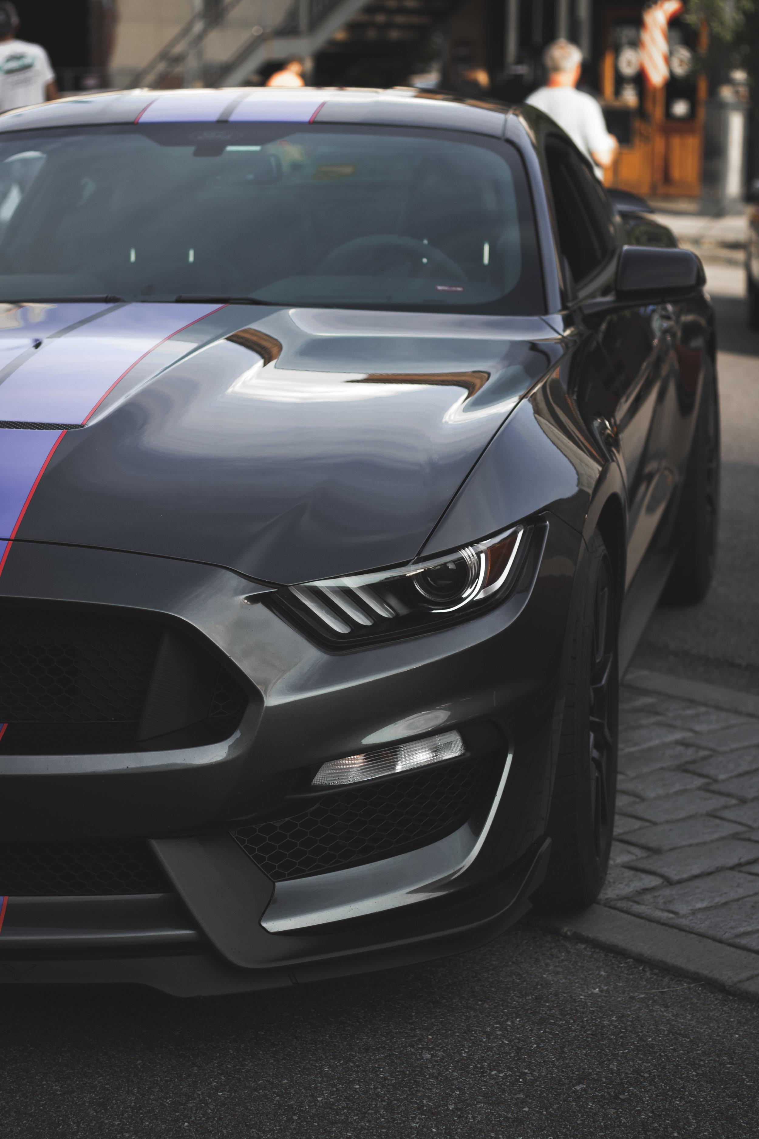 Mustang Mood.jpg