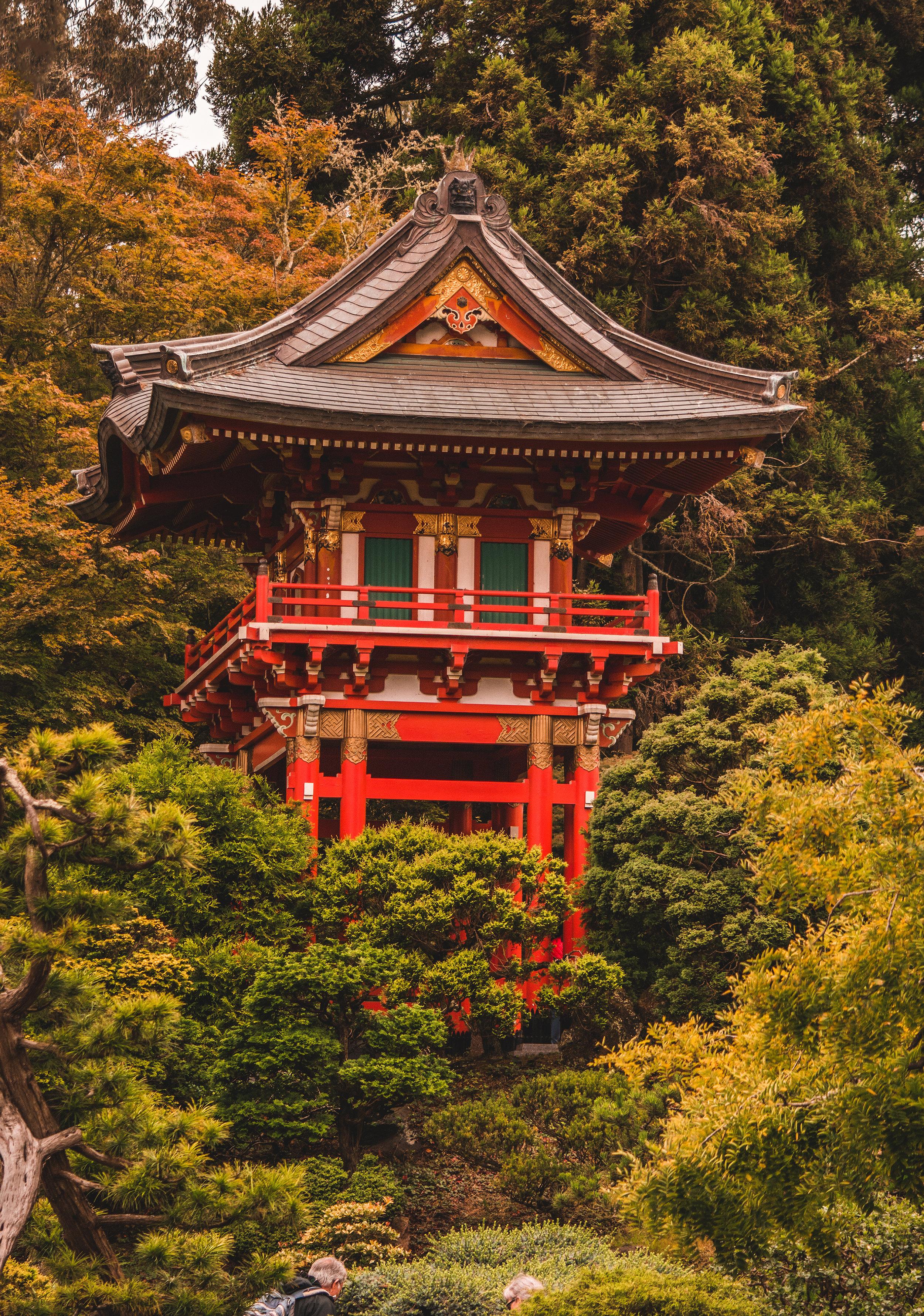 Japan Building.jpg